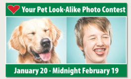 Submissions, Voting Open for Pet Look-Alike Contest
