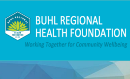 Buhl Health Foundation Launches Online Portal