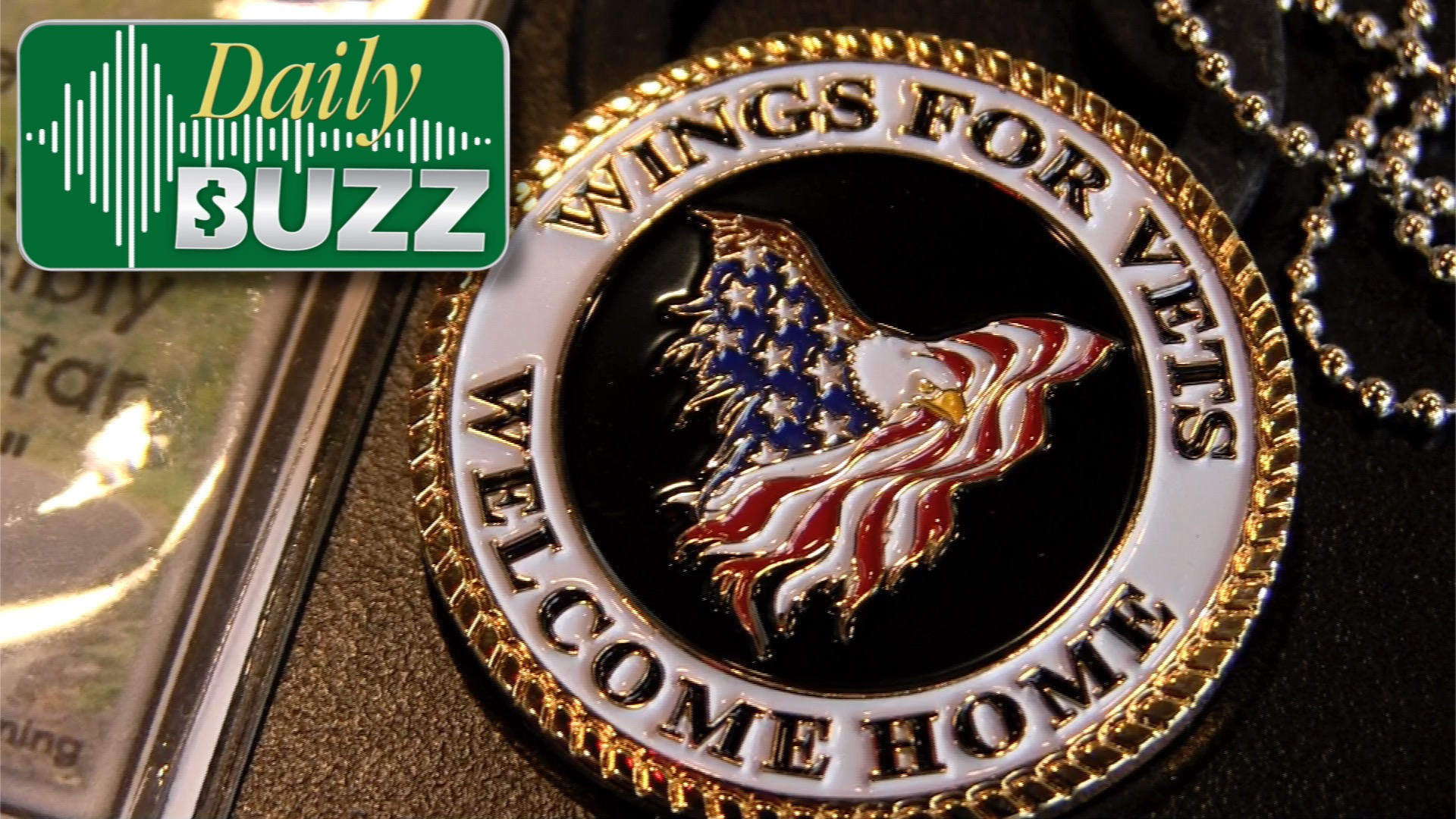 Wings for Vets