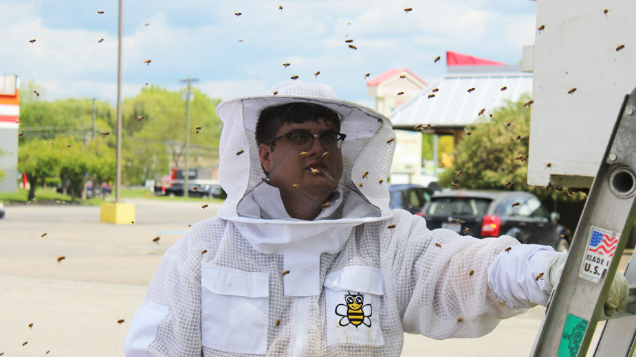 Travis Watson, The Bee Man