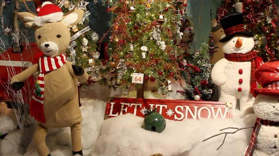 Tour Through Kraynak's Christmas Display