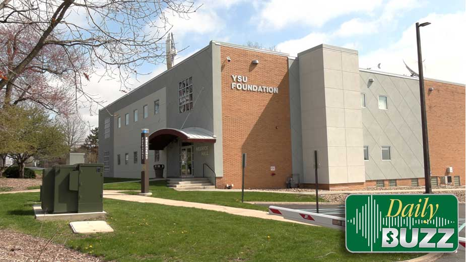 Stepping Up: Briarfield Health Care, OH WOW!, YSU Foundation