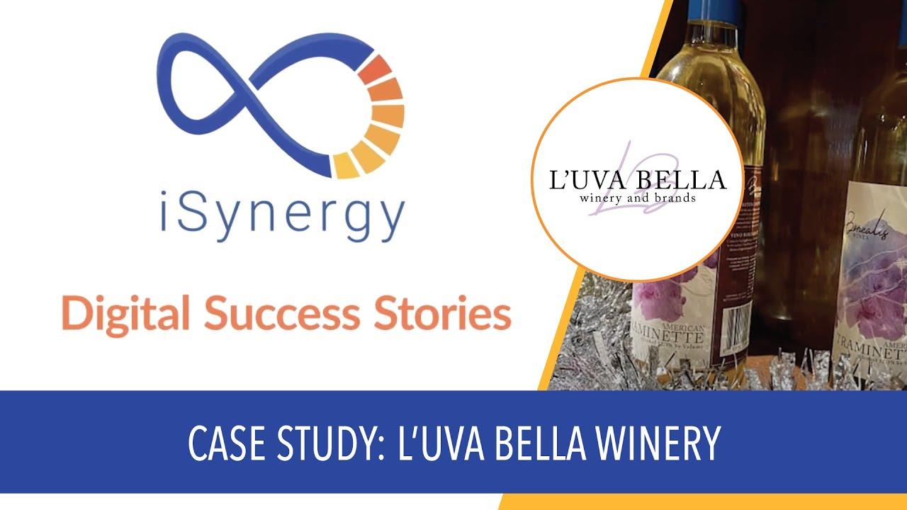 isynergy digital success stories