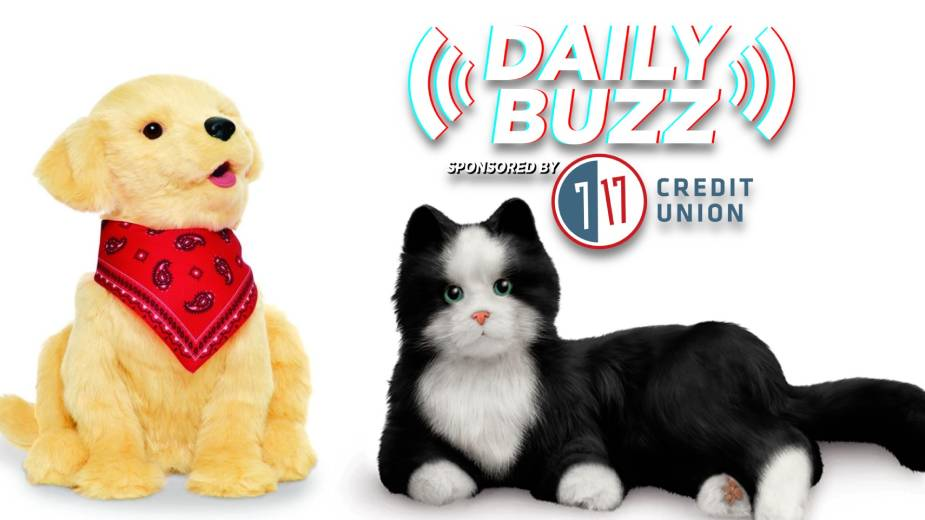 Daily Buzz 8-5-21   Choolaah Indian BBQ Comes to Boardman, Heritage Manor Residents Get Robotic Pets